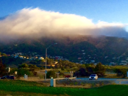 Fog over Bay Area Oscar Roca
