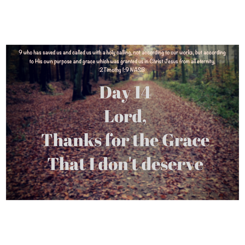 Day 14Thanls for the Grace I don't deserve.png