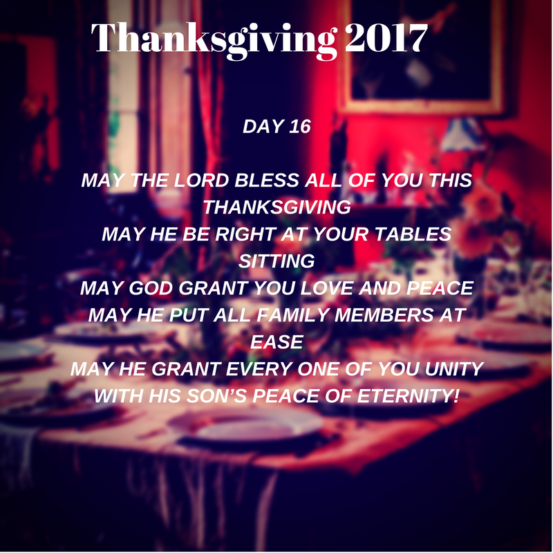 Thanksgiving 2017 Day 16.png