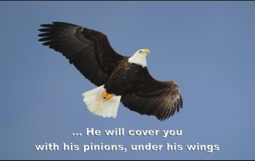 https://kcdn.whatchristianswanttoknow.com/wp-content/uploads/2015/05/psalm-91.jpg