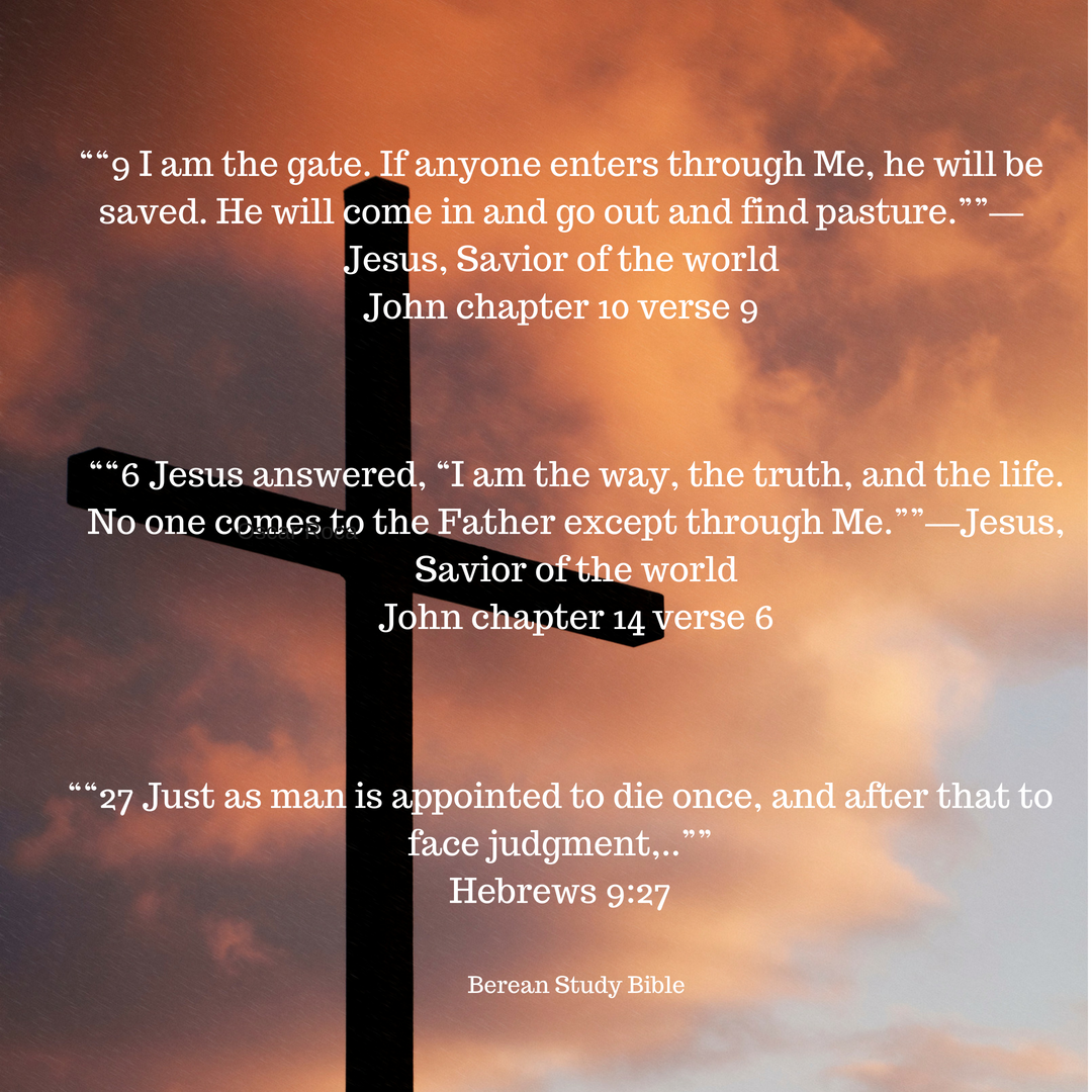 """""9 I am the gate. If anyone enters through Me, he will be saved. He will come in and go out and find pasture.""""— Jesus, Savior of the world John chapter 10 verse 9.png"